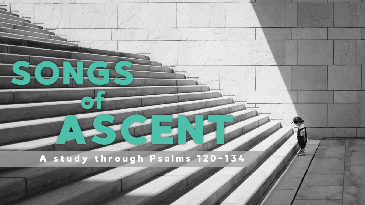 New Sermon Series this Sunday! Psalms of Ascent.